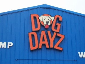 face-lit channel letters for Dog Dayz